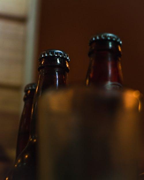 Free stock photo of alcohol bottles, bar, beer, beer bottle