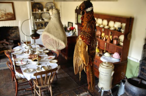 Free stock photo of dining room, food, old-fashioned, pheasant