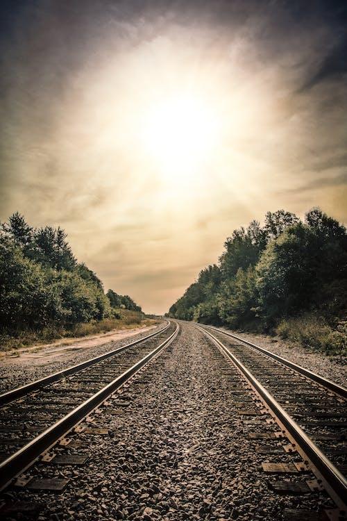 Gratis lagerfoto af jernbanespor, sol, tran