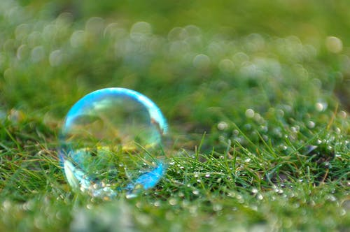 Free stock photo of bubble, close-up, grass, water drops