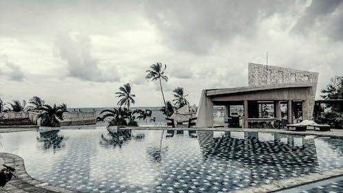 アフリカ, ケニア, 白黒ホテルプール, 静かで静かな空のプールの無料の写真素材