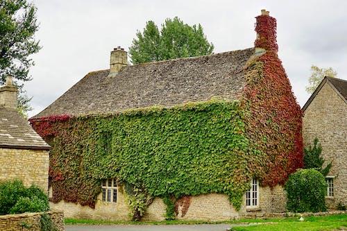 Ảnh lưu trữ miễn phí về lá đỏ, làng, màu xanh lá, nước Anh