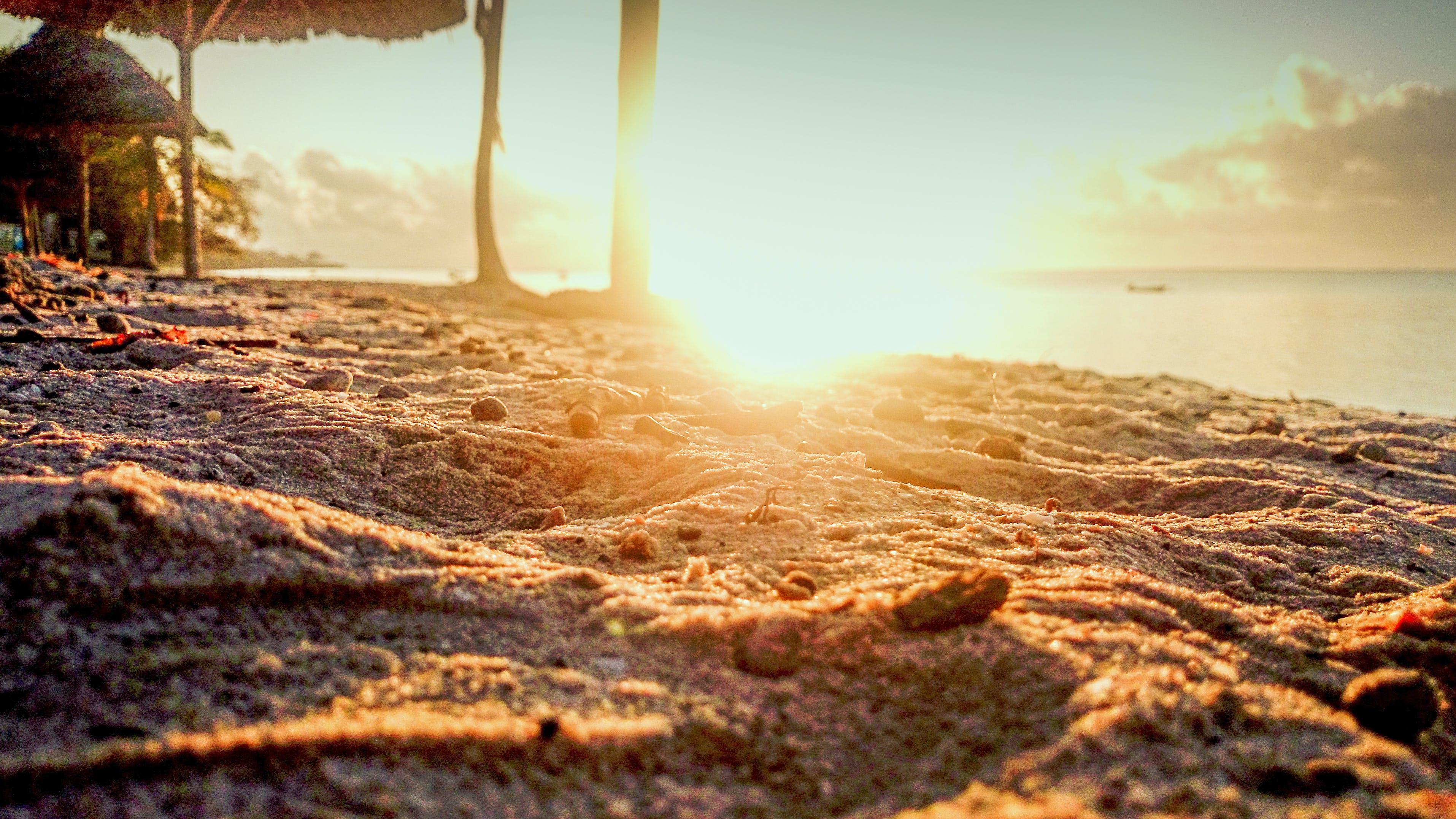Shallow Focus Photo of Sand