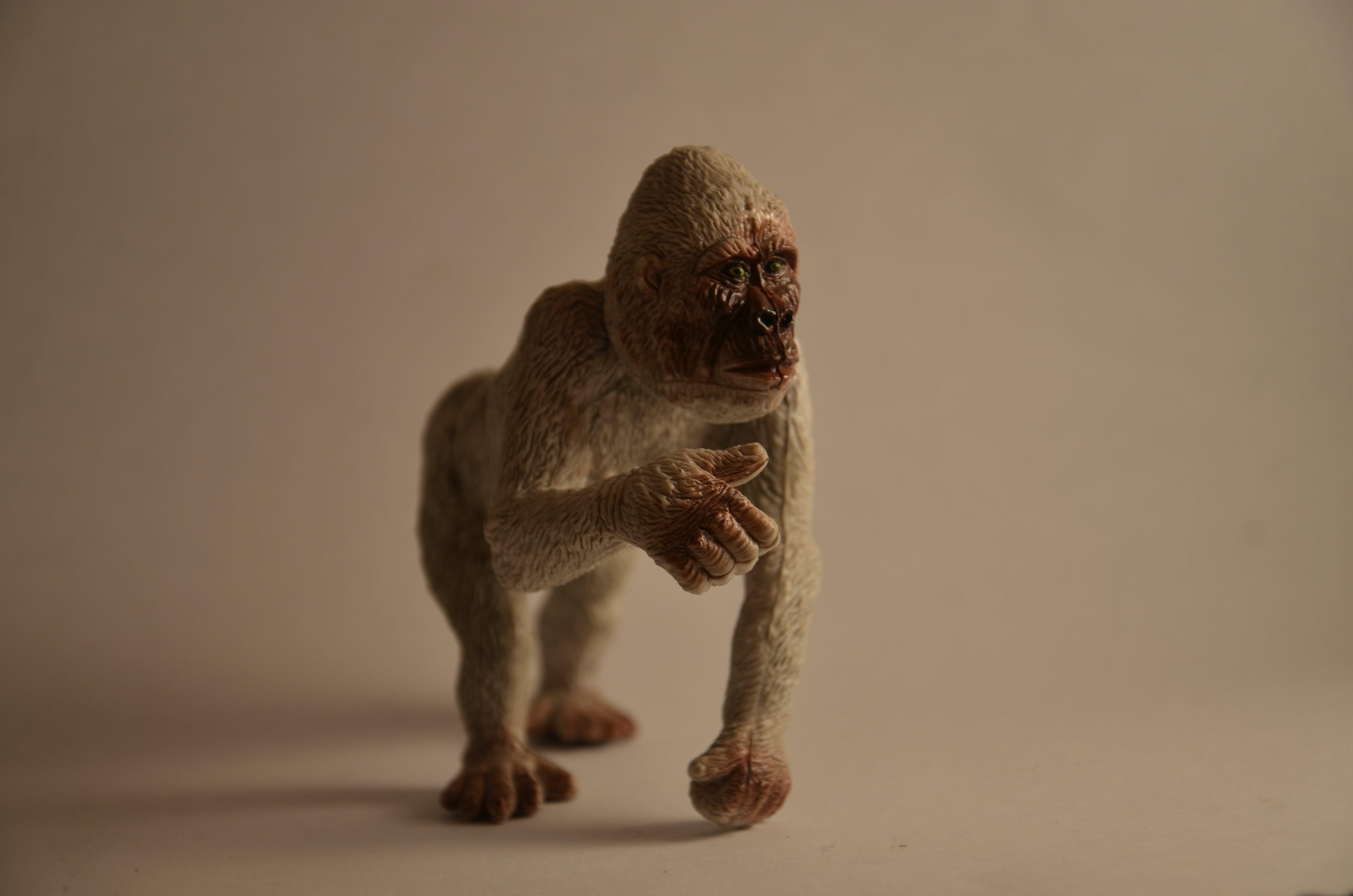Brown Monkey Toy