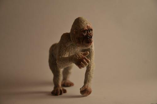 Gratis lagerfoto af abe, dyr, legetøj, plastik