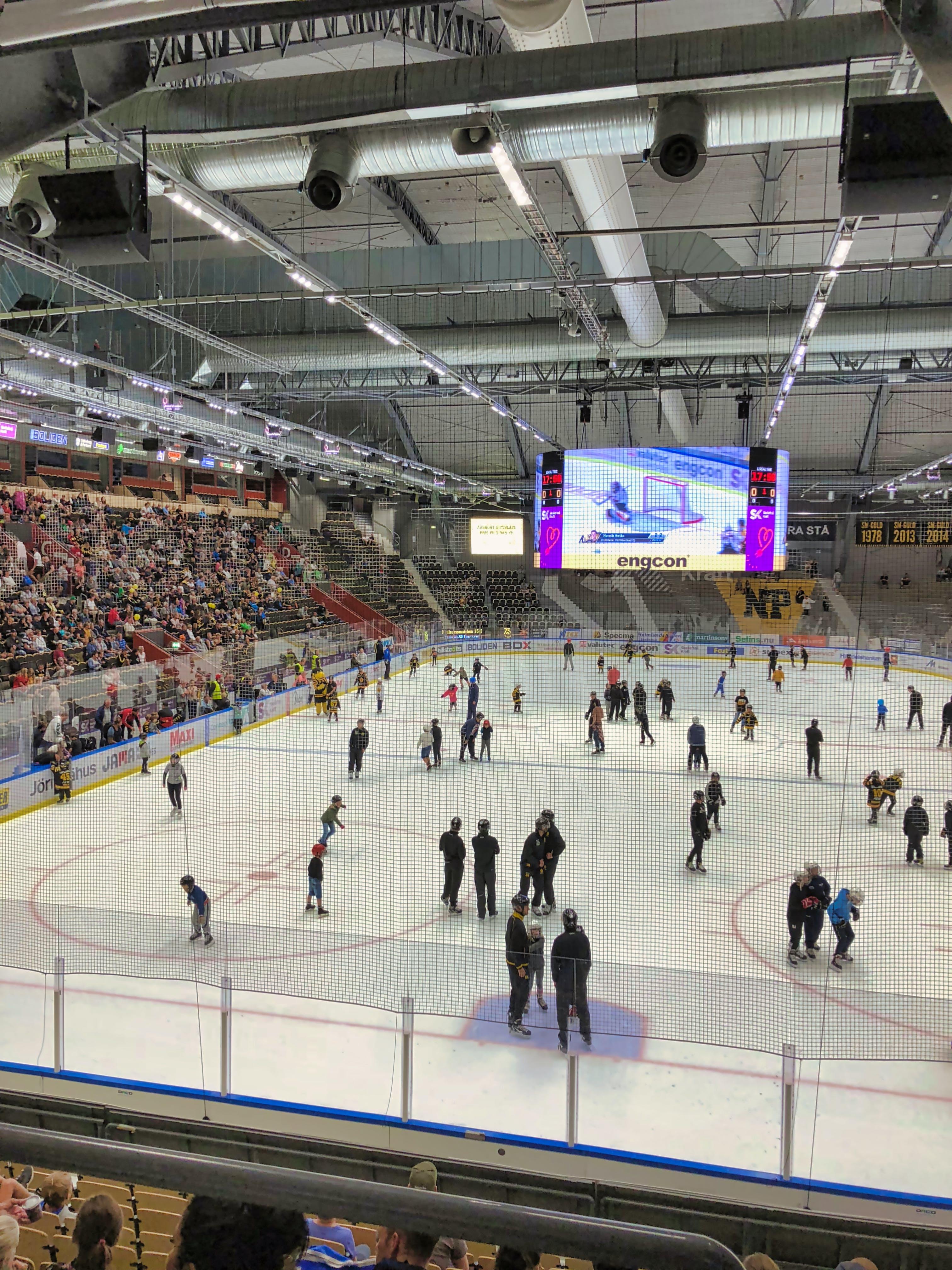 Free stock photo of icehockey, skellefteå aik