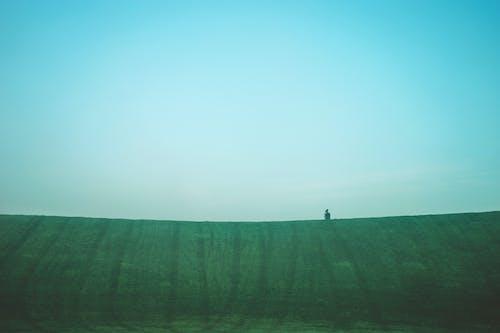 Fotos de stock gratuitas de césped, césped verde, cielo azul, colina