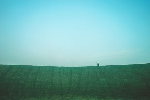 Free stock photo of landscape, person, hill, grass