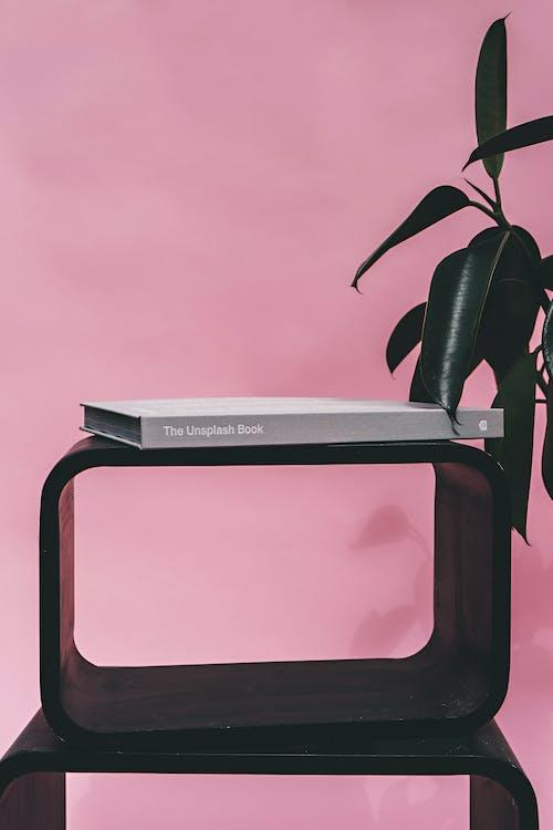 Безкоштовне стокове фото на тему «ботанічний, всередині, Деревина»