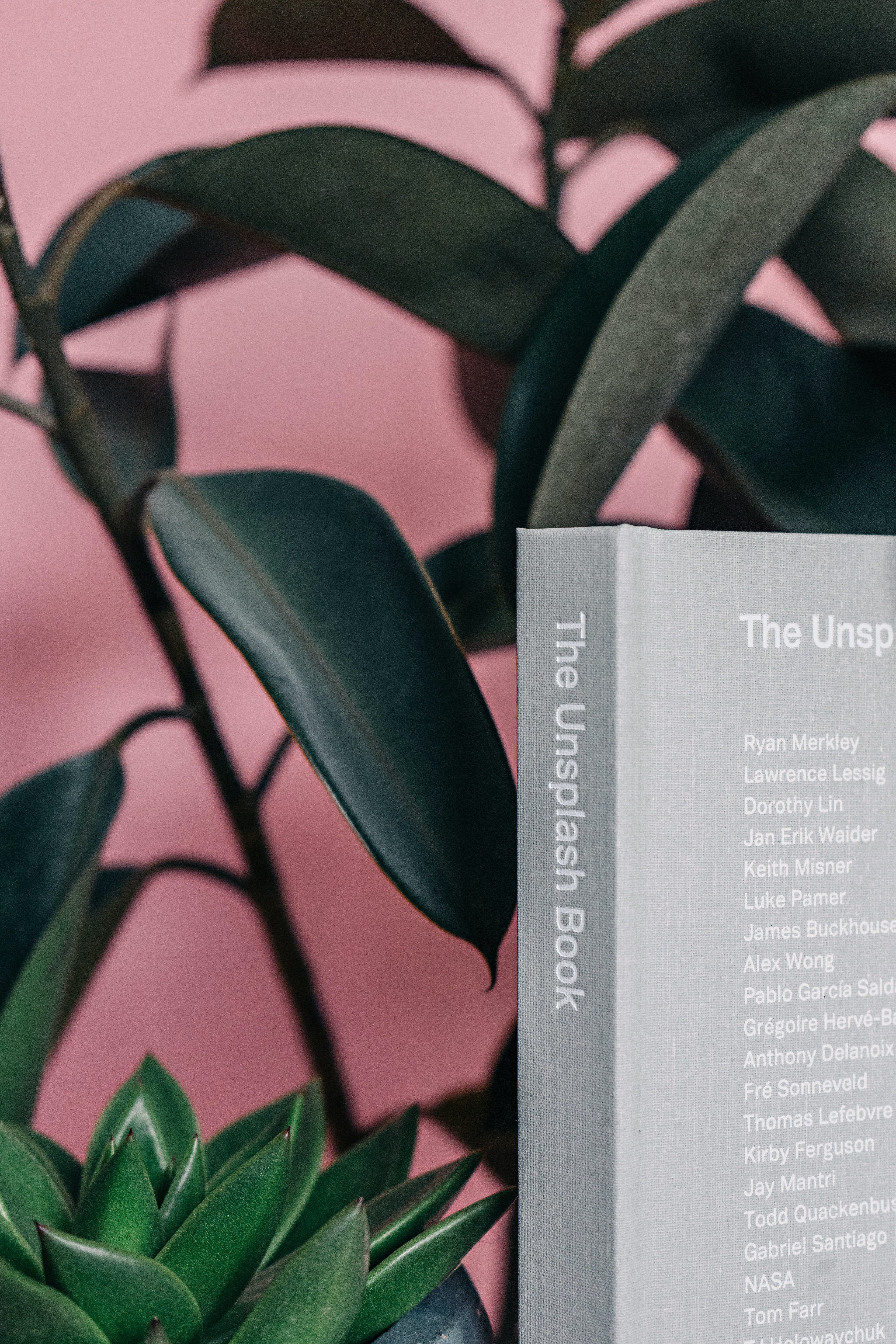 The Uinsplash Book Near Plant