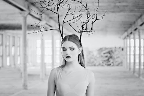 Ingyenes stockfotó álló kép, fekete-fehér, gallyak, haj témában