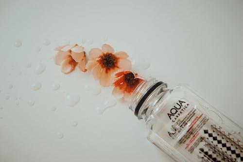 Immagine gratuita di acqua, azzurro acqua, bicchiere, bottiglia