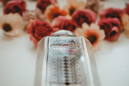 Gratis stockfoto met aqua, binnen, bloeiend, bloemen