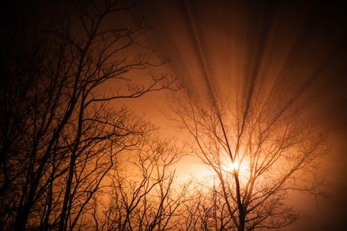 Fotobanka sbezplatnými fotkami na tému lúč slnečného svitu, oranžová, príroda, slnko