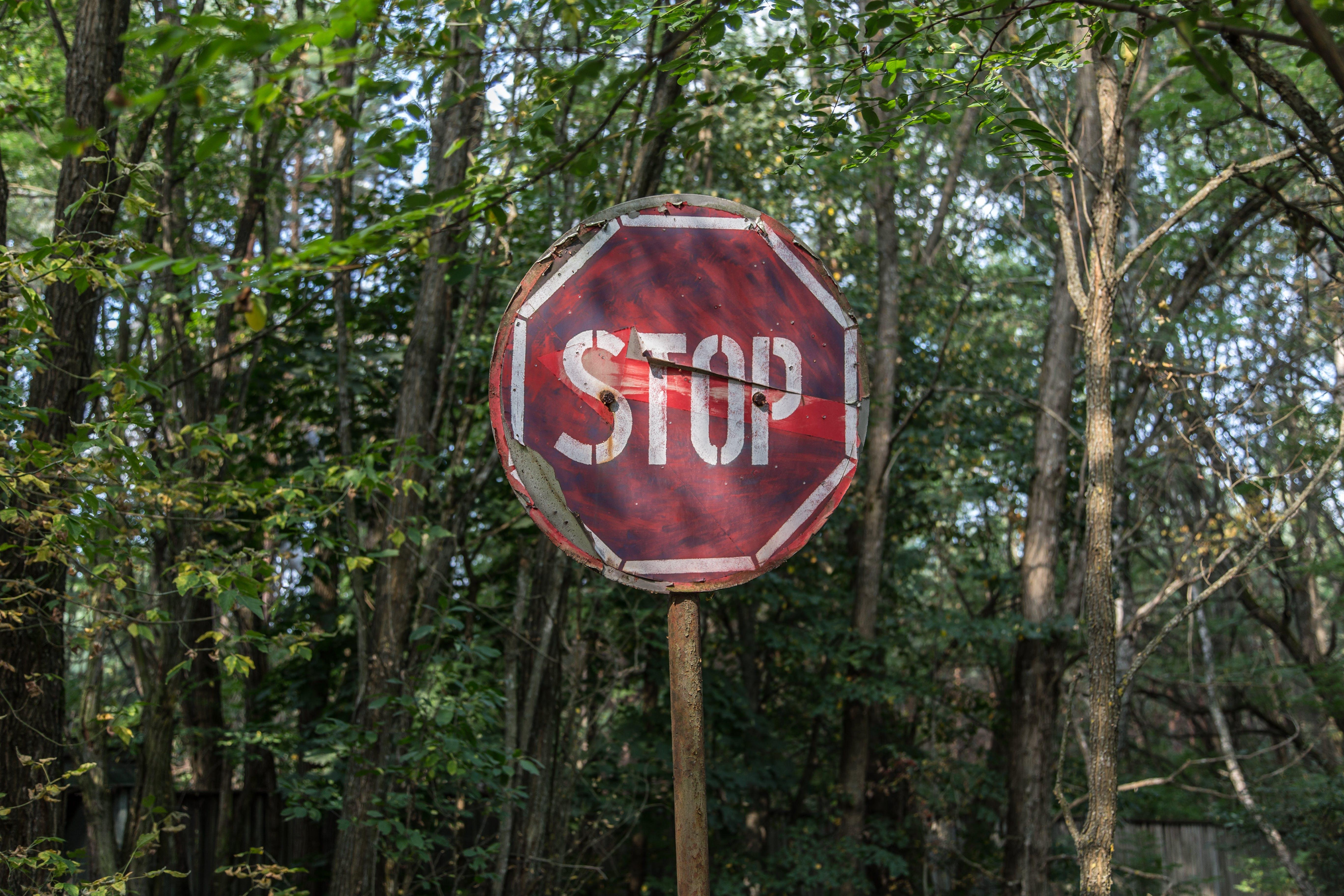 advertència, arbres, aturar