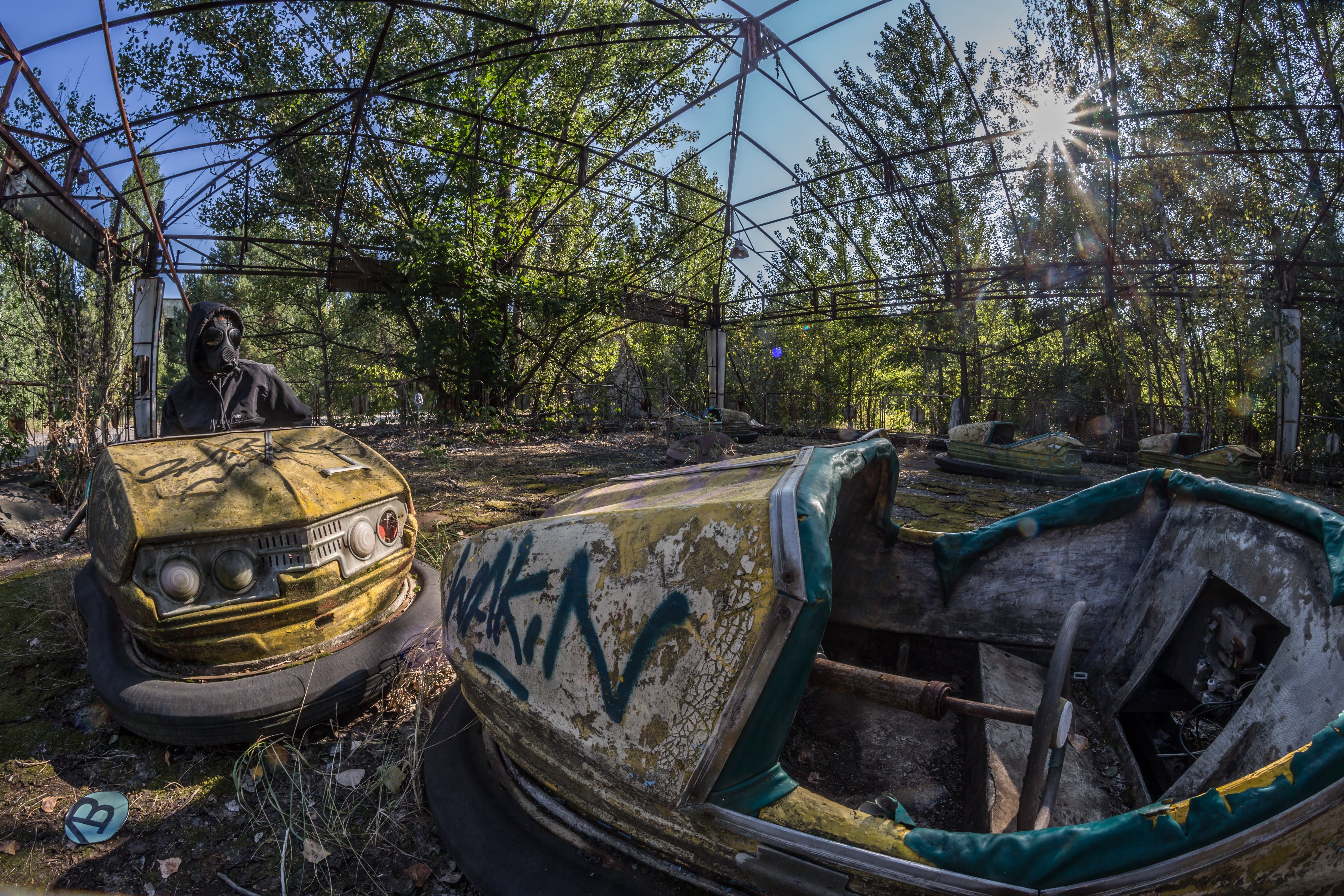 Two Wrecked White and Yellow Bump Cars Surrounded With Trees