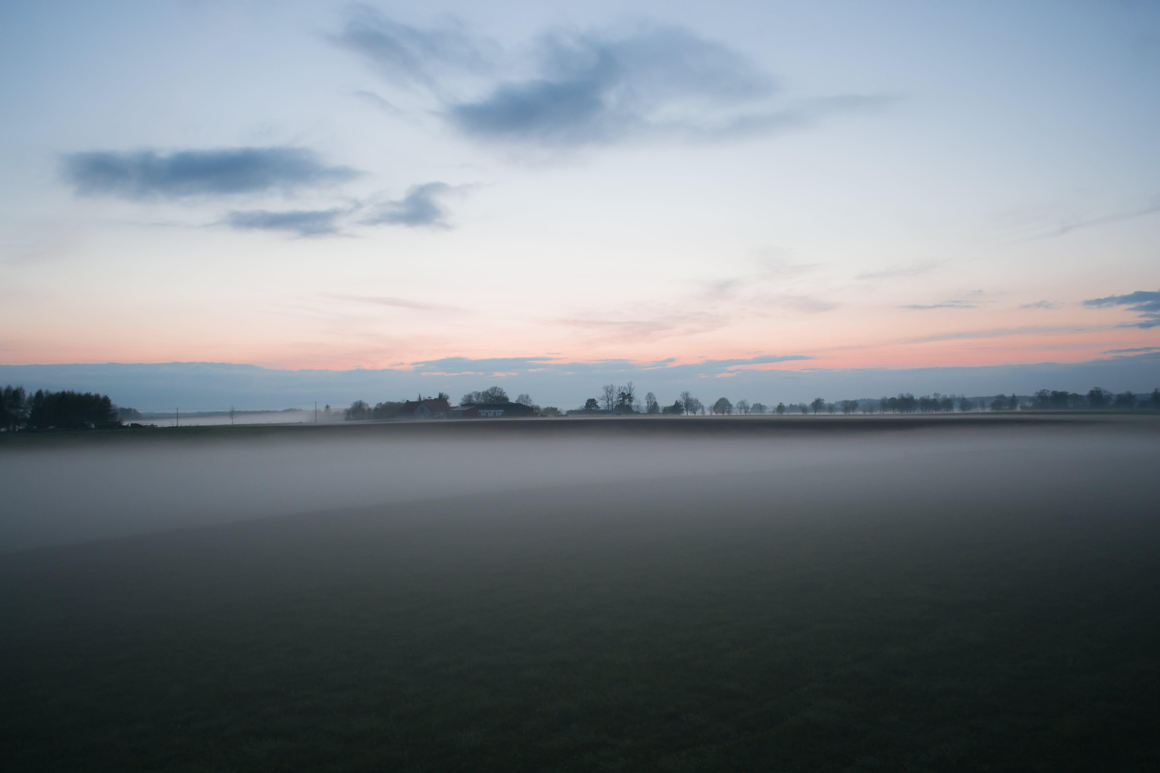 Gratis stockfoto met bomen, dageraad, gras, landschap