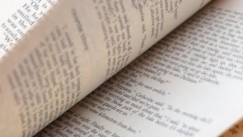 คลังภาพถ่ายฟรี ของ กลับ, นวนิยาย, หน้าหนังสือ, หมุน