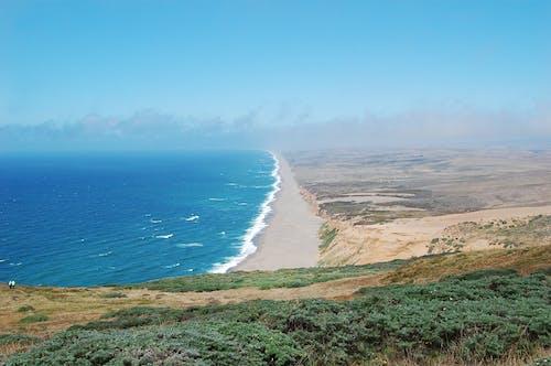 海, 海岸, 海灘, 藝術 的 免费素材照片
