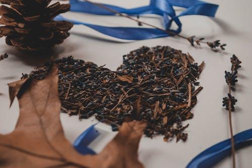 Бесплатное стоковое фото с Ароматический, в помещении, голубой, лаванда