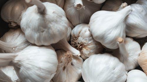 #garlic #health #home #diy #food #, #vegetables #organic #photography의 무료 스톡 사진