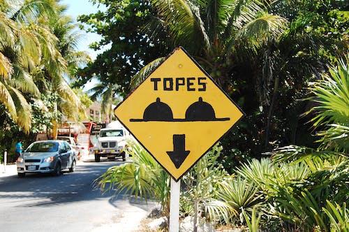 墨西哥, 標誌, 街 的 免费素材照片
