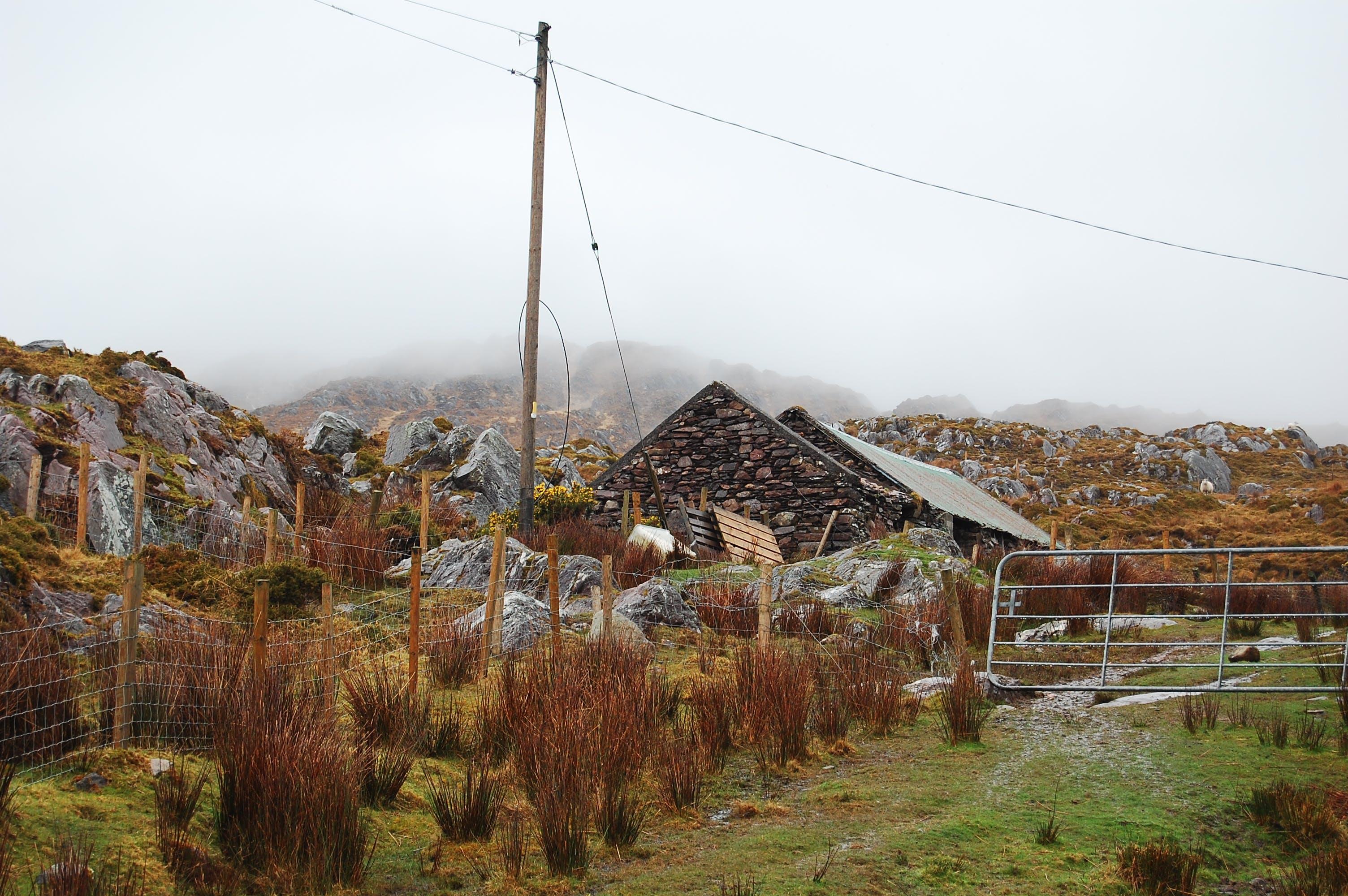 Free stock photo of abandoned, autumn, farm, house