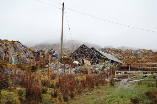 Fotobanka sbezplatnými fotkami na tému farma, Írsko, opustený