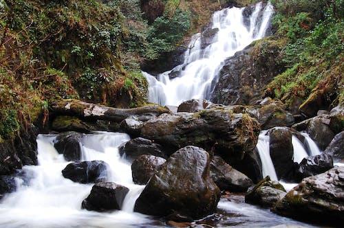 天性, 水, 瀑布 的 免费素材照片