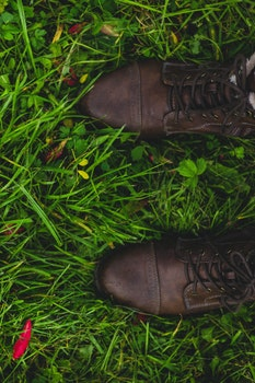 Free stock photo of feet, grass, shoes, leather