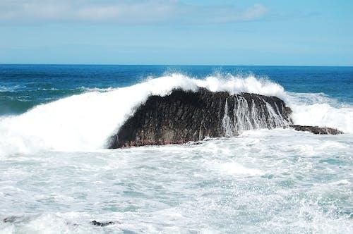 招手, 海, 破浪 的 免费素材照片
