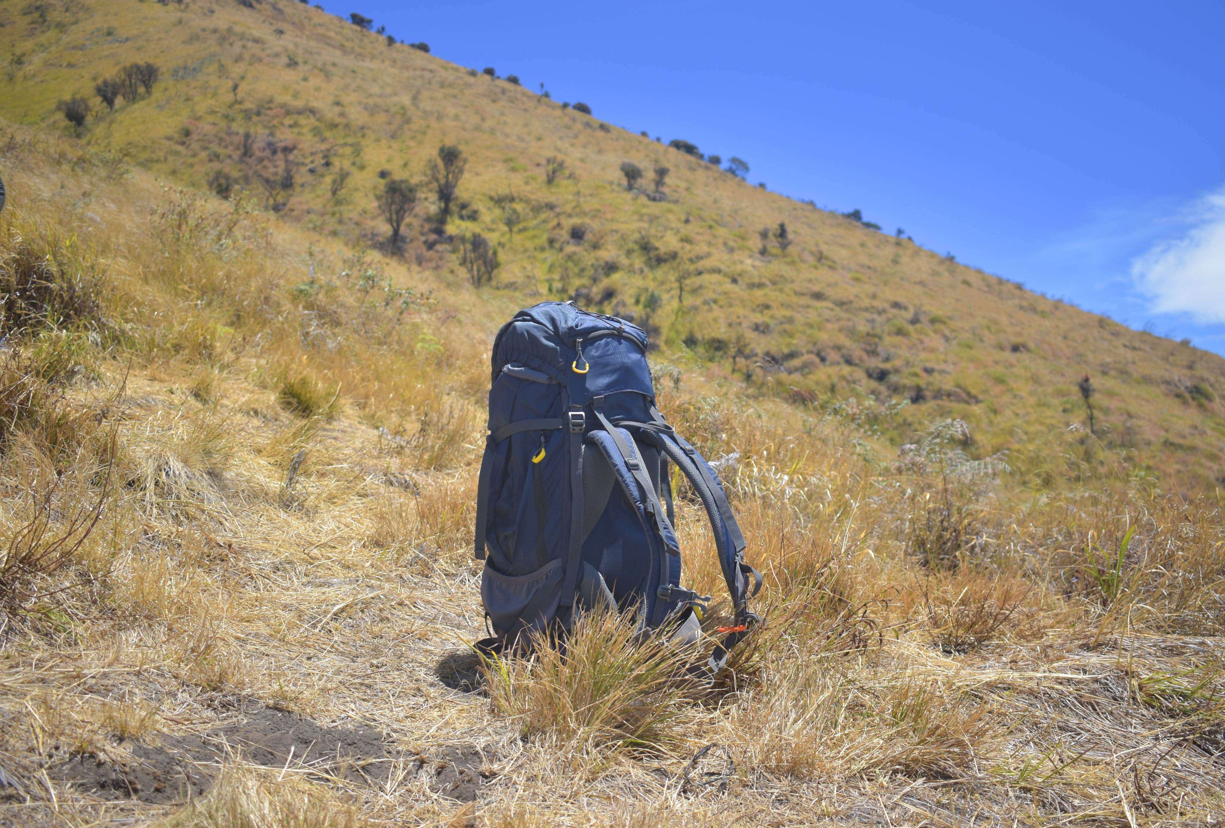 Free stock photo of adventure, backpack, freedom, meadow