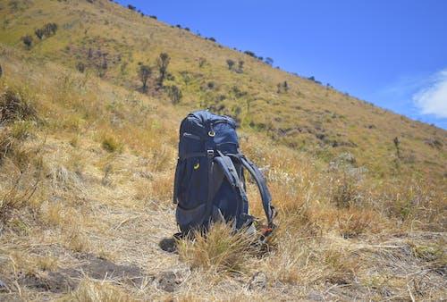Безкоштовне стокове фото на тему «альпінізм, гірський туризм, літо, луг»
