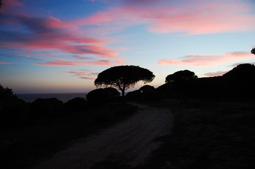Fotobanka sbezplatnými fotkami na tému lila, západ slnka