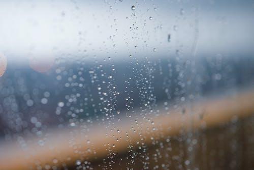 Free stock photo of blur, blurr, blurred background, rainy day