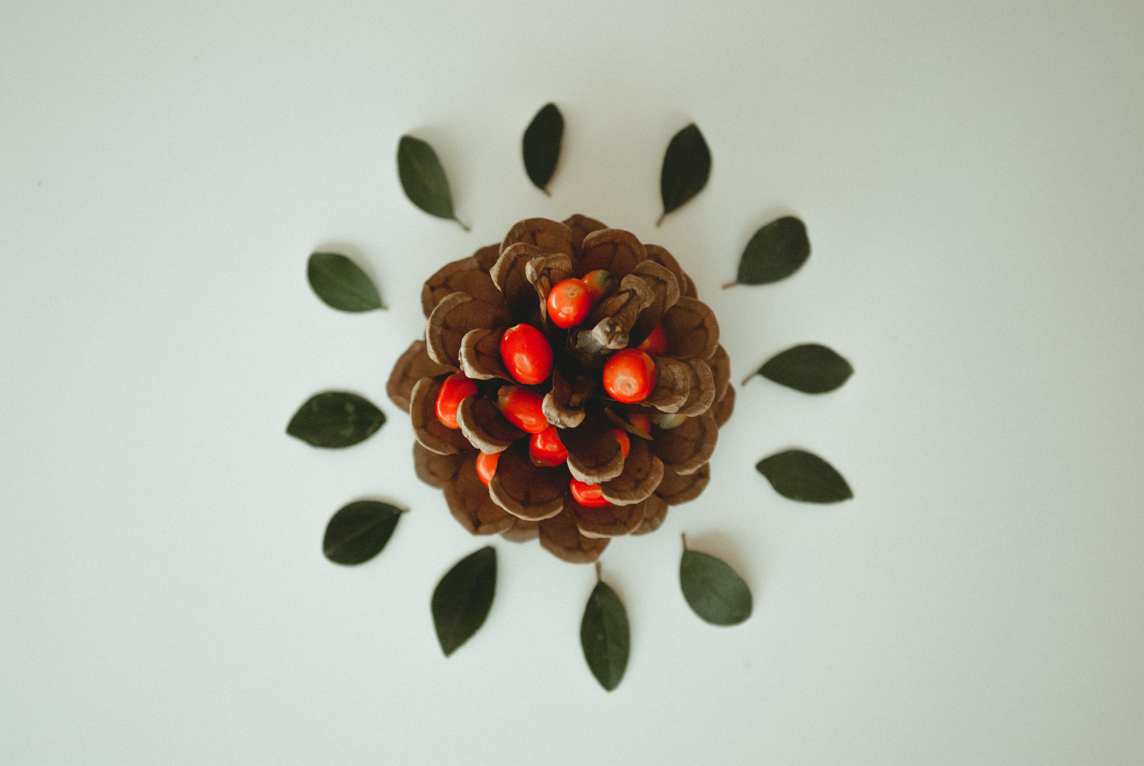 Pine Cone With Cherry Tomatoes