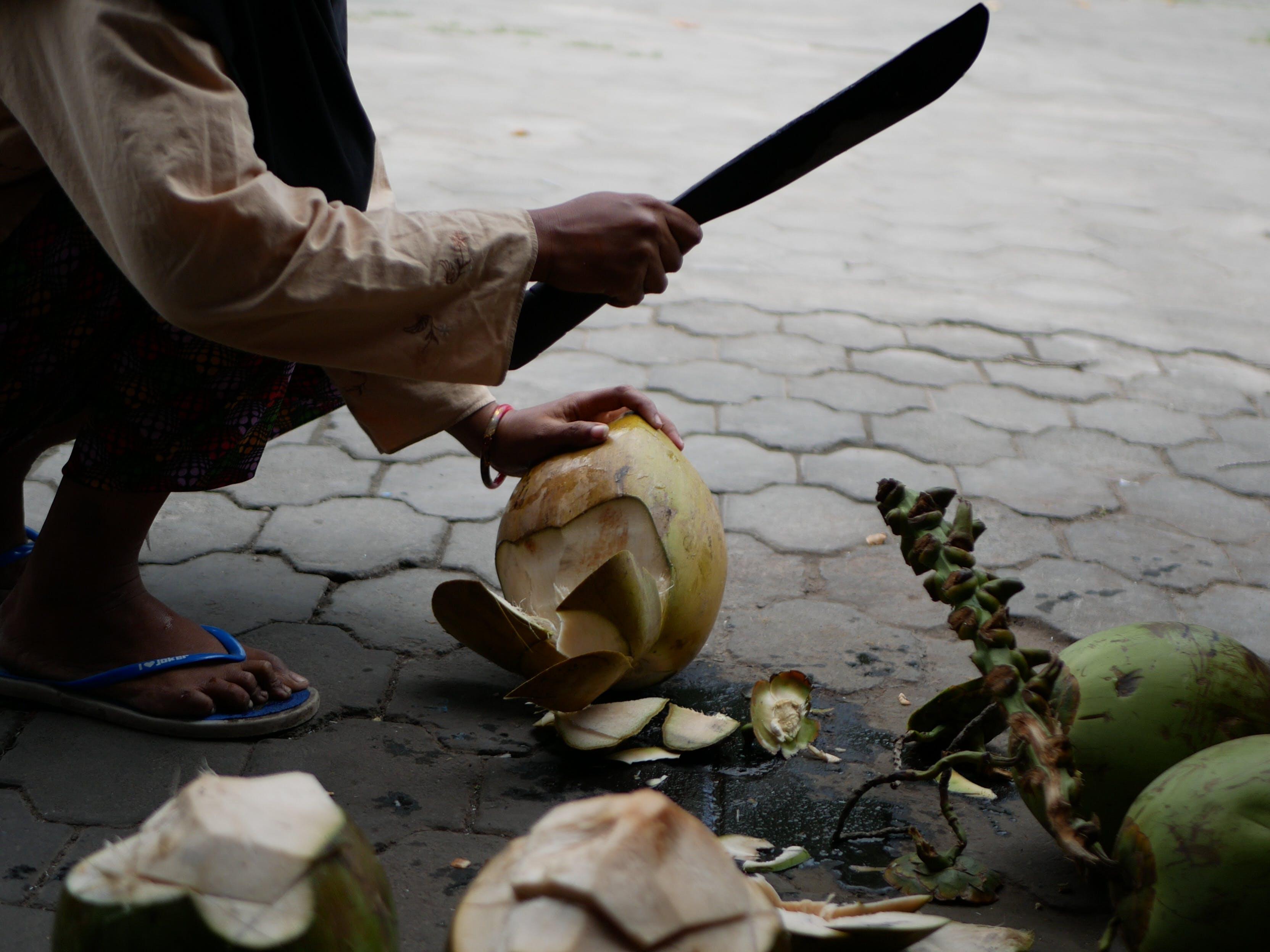 Free stock photo of bali, coconut, exotic