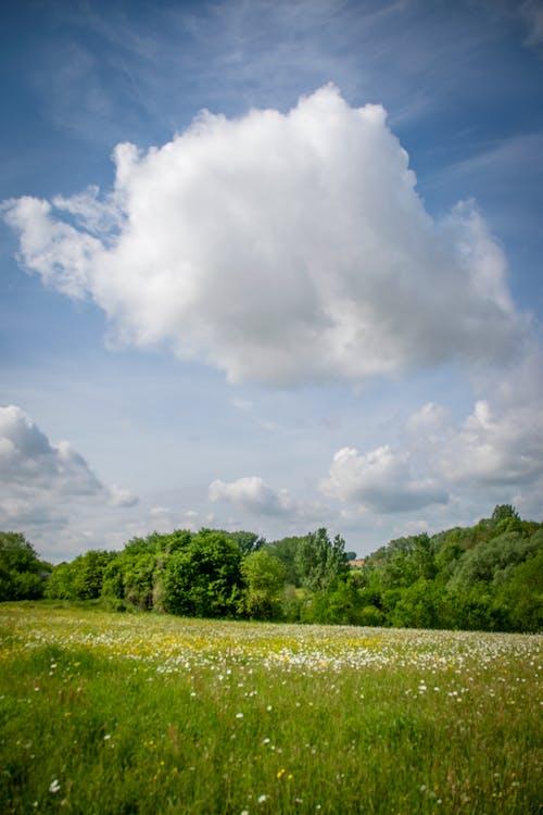 戦う, 雲, 風景の無料の写真素材