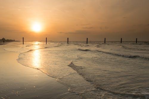 ビーチ, 水, 海, 海岸の無料の写真素材