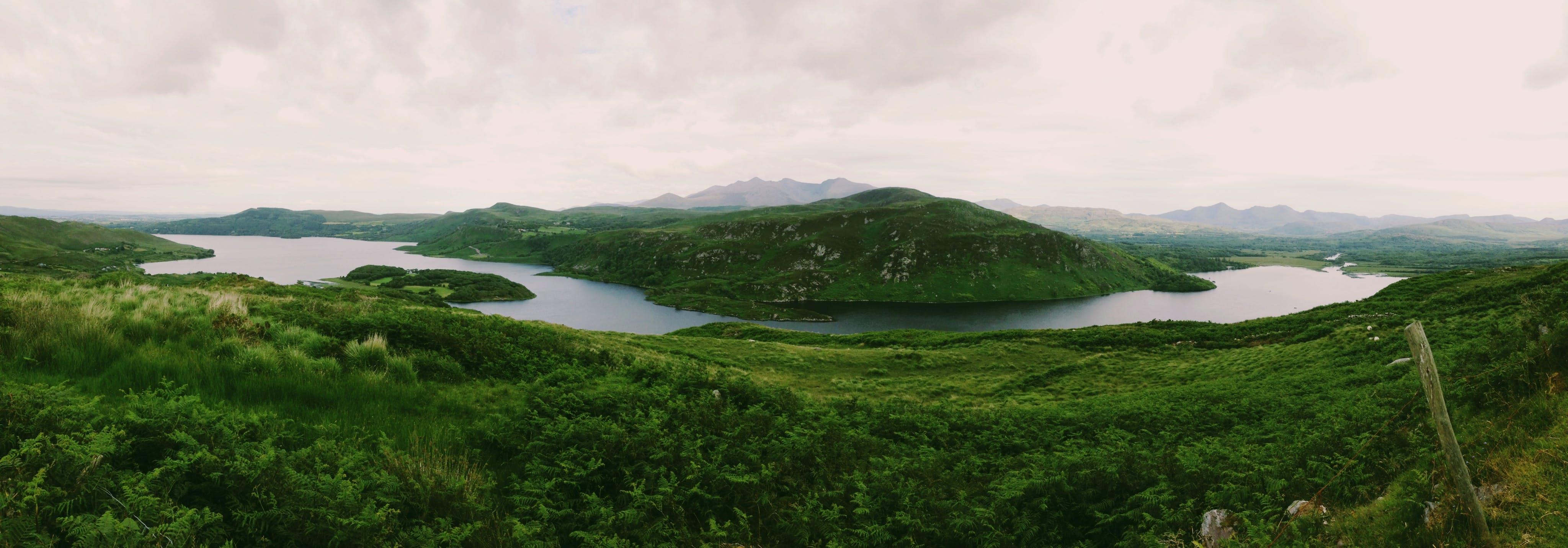 Foto stok gratis air, alam, gunung, hijau