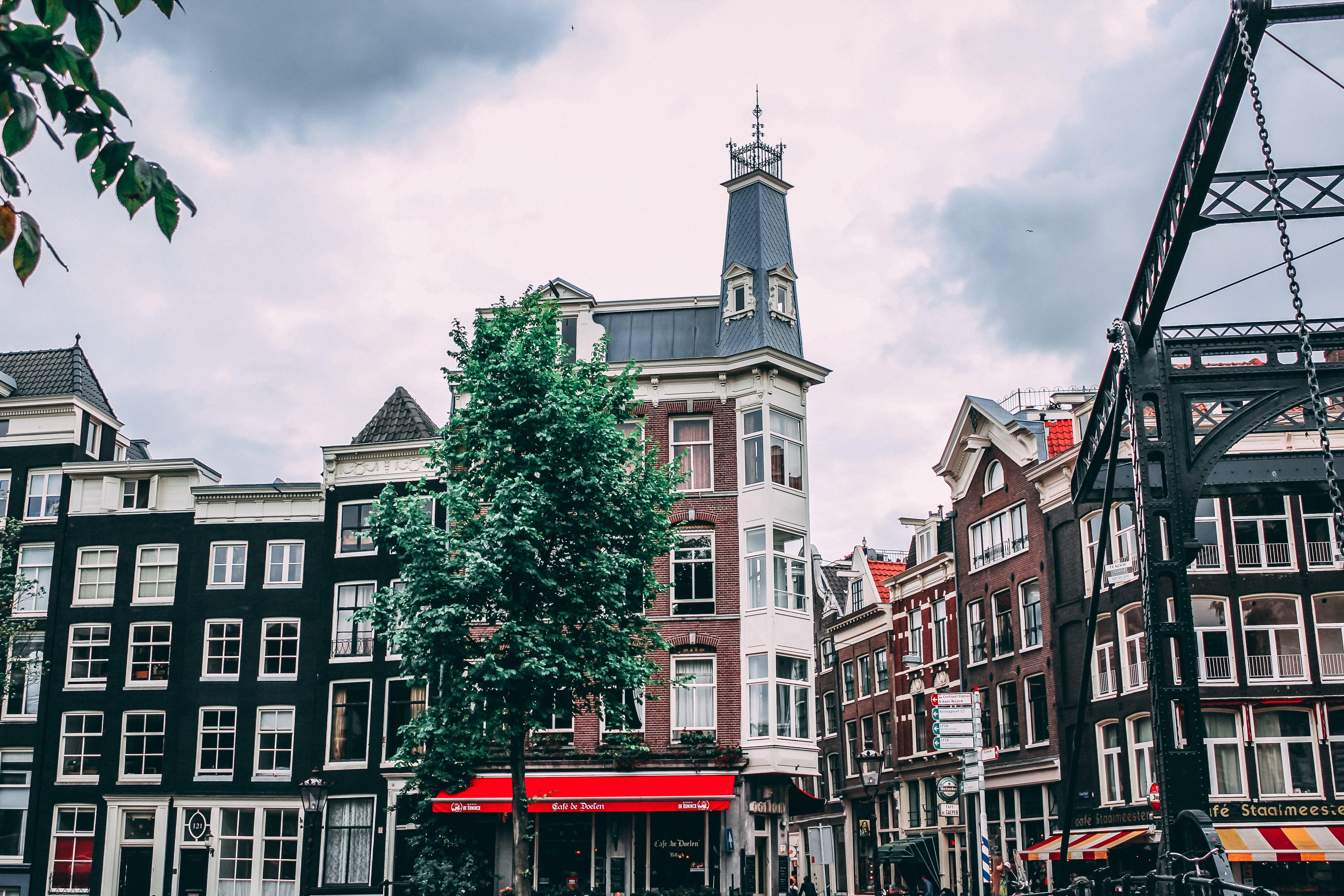 Ingyenes stockfotó Amszterdam, klasszikus amszterdam, waterlooplein, waterlooplein piac témában