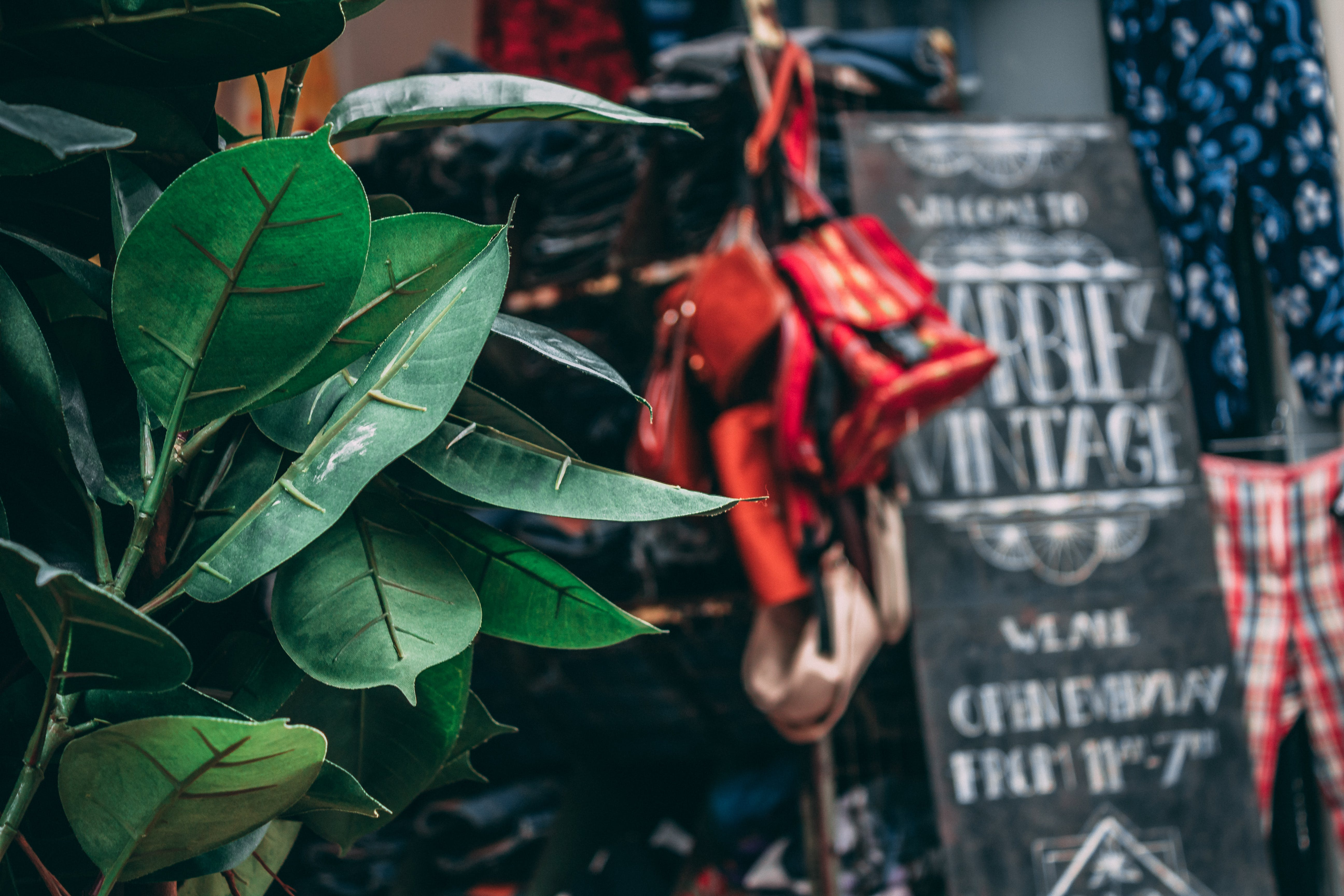 Free stock photo of amsterdam, vintage, Vintage Shopping