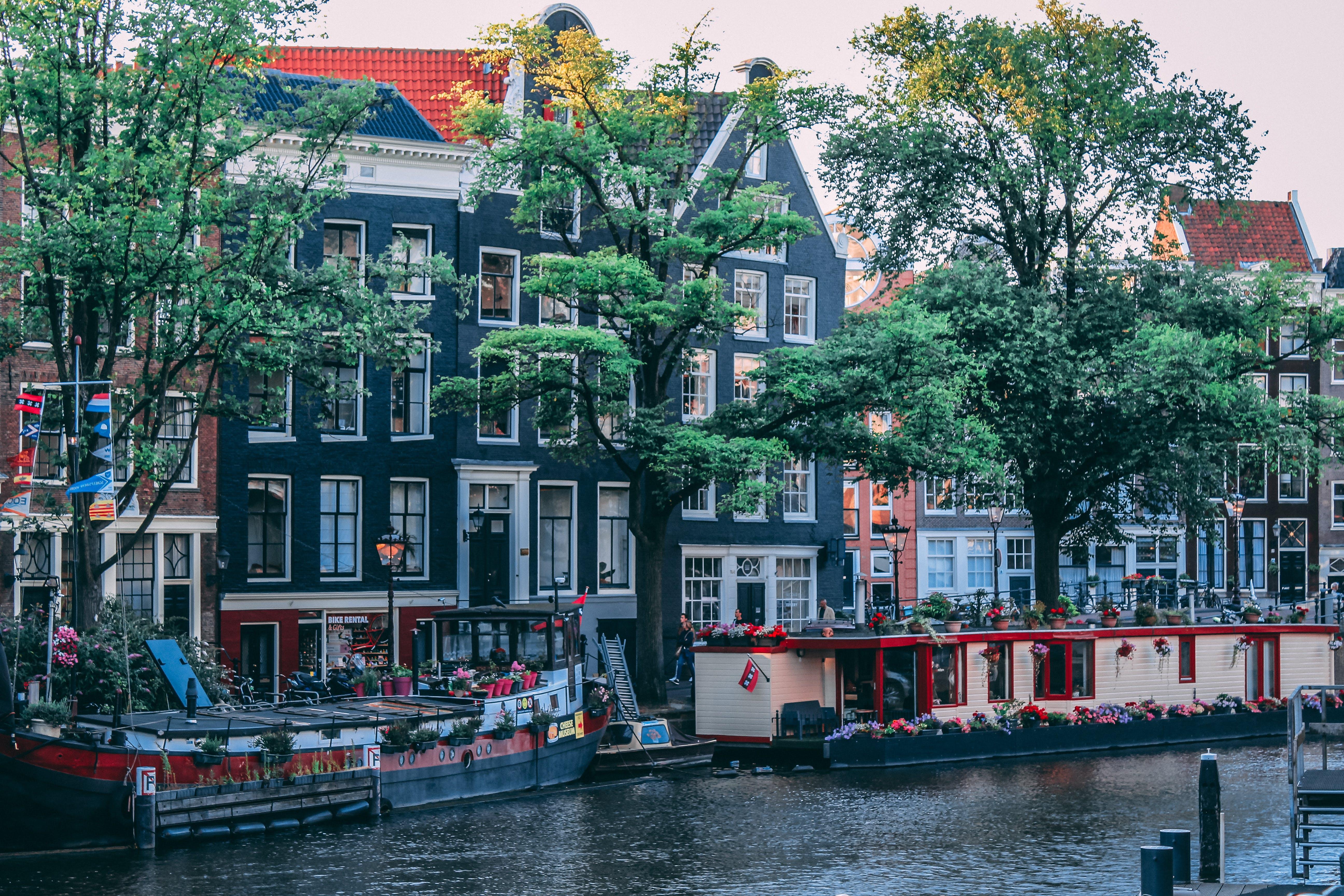 Ingyenes stockfotó Amszterdam, klasszikus amszterdam témában