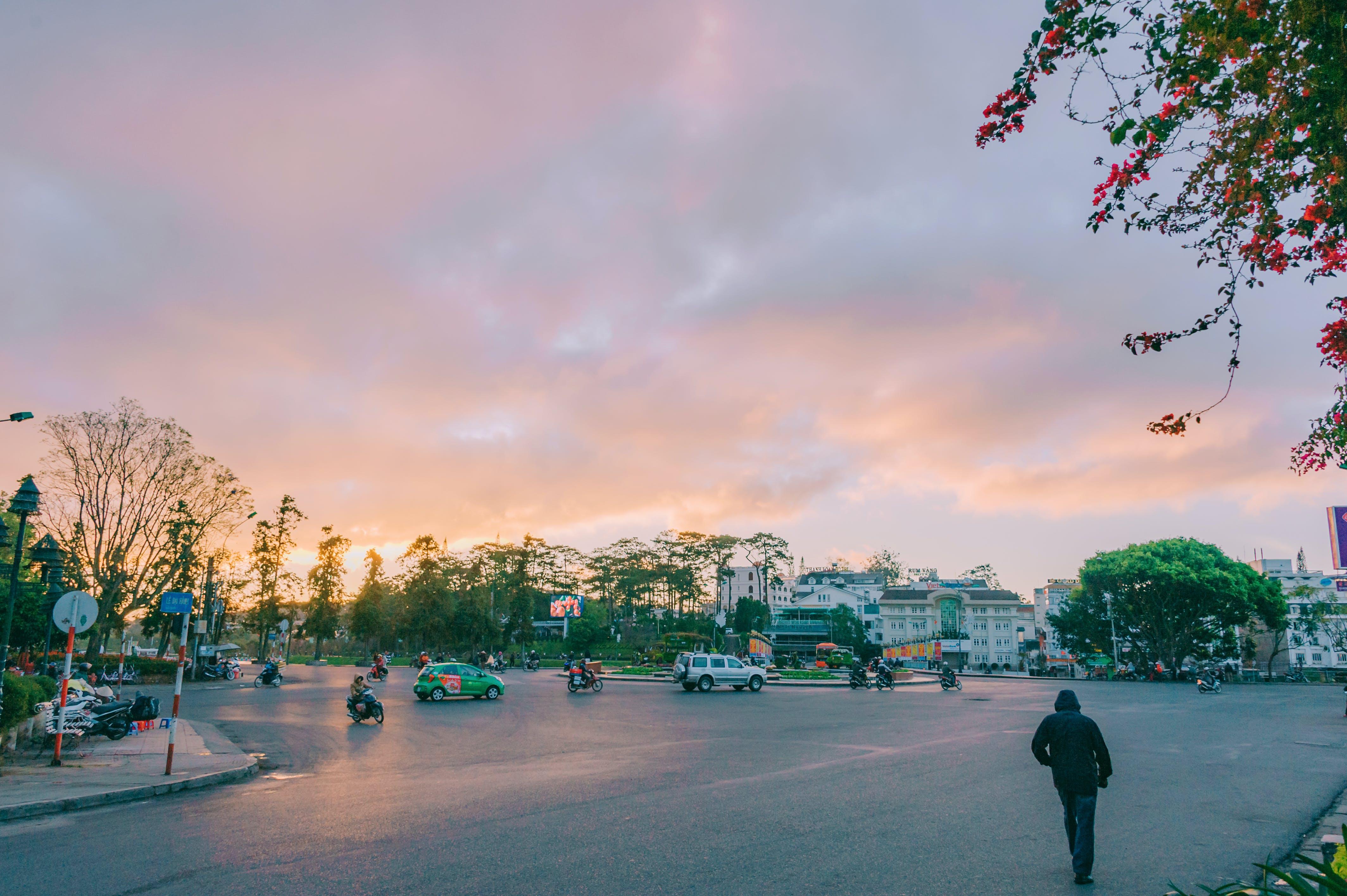 Gratis stockfoto met architectuur, auto's, bomen, gebouwen