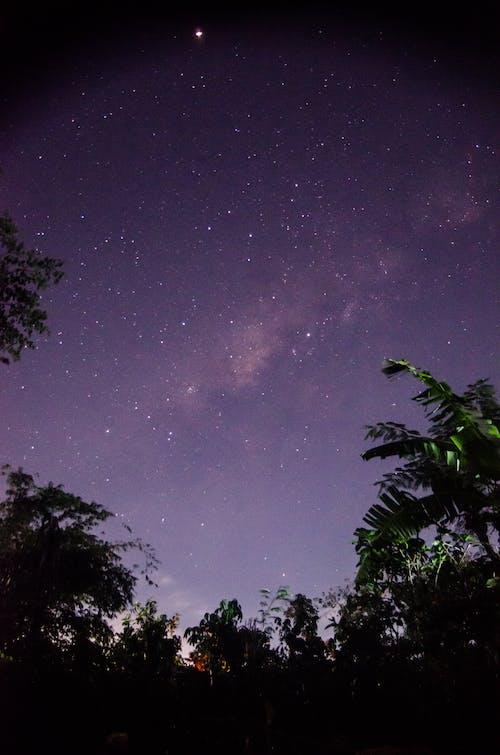 Gratis arkivbilde med astrofotografering, melkeveien, nattfotografi