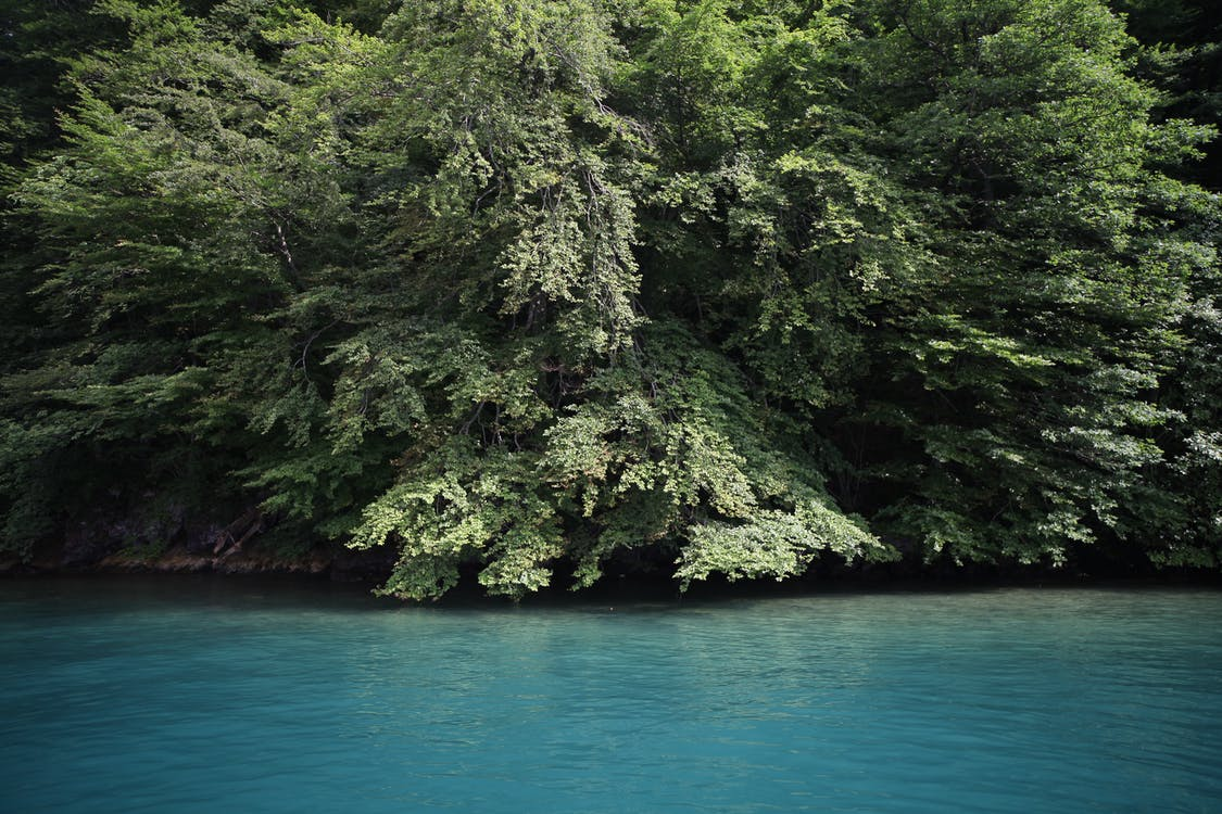 Weitwinkelfoto Des Gewässers