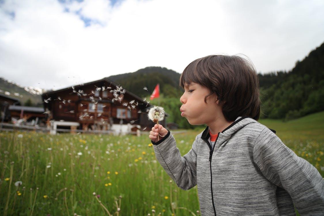 Boy Holding Dandelion Blowing Near Green Grass Field