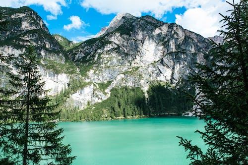 Foto stok gratis air, alam, alami, awan