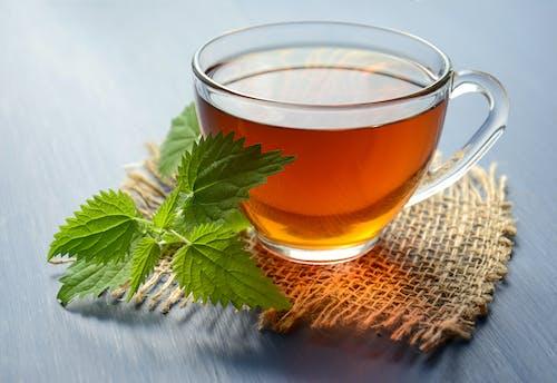 100 Cozy Tea Images Pexels Free Stock Photos