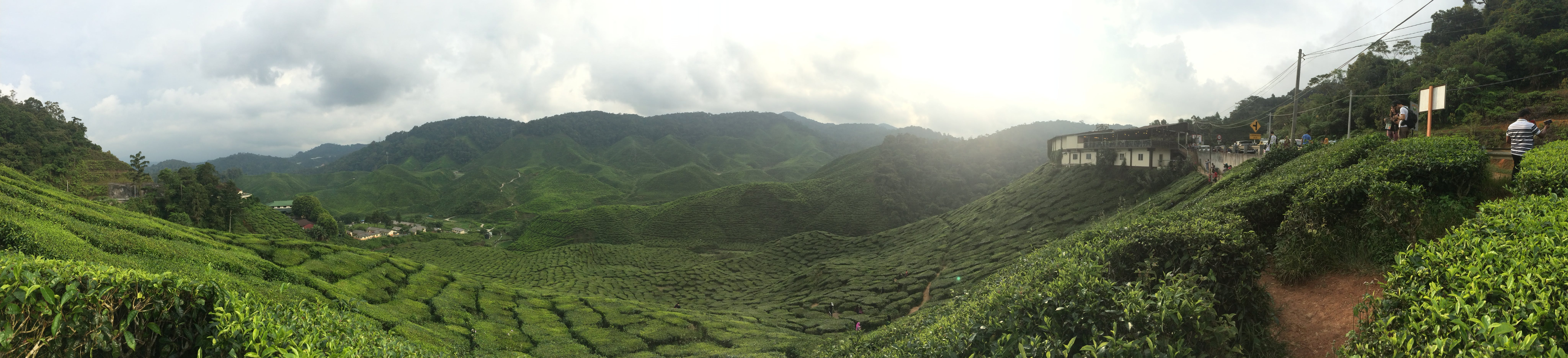 Panoramic Photography of Green Mountain Range